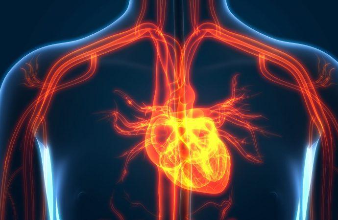 More Evidence Ties Gum Disease With Heart Disease