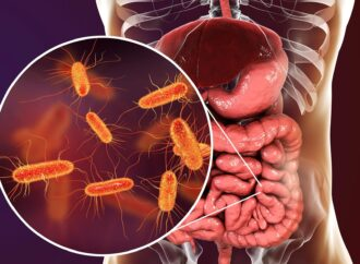 Gut Bacteria May Fuel Prostate Cancer Treatment Resistance