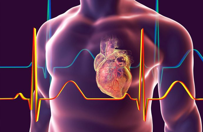 Black Americans Still at Higher Risk for Heart Trouble